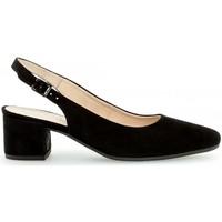 Chaussures Femme Escarpins Gabor Escarpin daim talon  block recouvert Noir