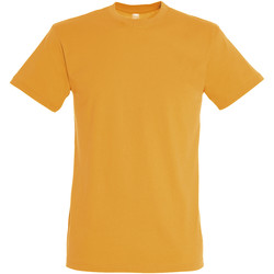 Vêtements Homme T-shirts manches courtes Sols REGENT COLORS MEN Naranja