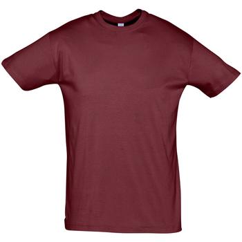 Vêtements Homme T-shirts manches courtes Sols REGENT COLORS MEN Burdeo