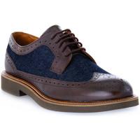 Chaussures Homme Derbies Frau SIENA TESTA MORO Marrone