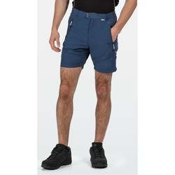 Vêtements Homme Shorts / Bermudas Regatta Sungari II Shorts de course d'homme Bleu