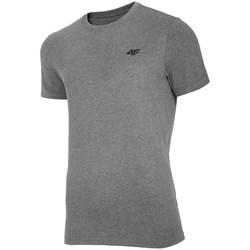 Vêtements Homme T-shirts manches courtes 4F TSM003 Gris
