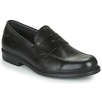 Chaussures Homme Mocassins Fluchos SIMON Noir
