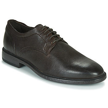 Chaussures Homme Derbies Geox TERENCE Marron