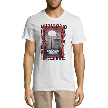 Vêtements Homme T-shirts manches courtes adidas Originals Originals Graphic Streetball Blanc