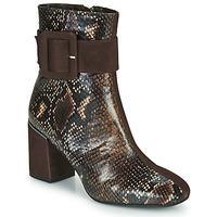 Chaussures Femme Bottines Perlato JAMIROCK Marron