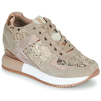 Chaussures Femme Baskets basses Gioseppo RAPLA Beige