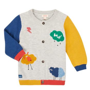 Vêtements Garçon Gilets / Cardigans Catimini CR18020-20 Multicolore