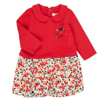 Vêtements Fille Robes courtes Catimini CR30043-38 Multicolore