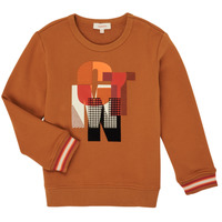 Vêtements Garçon Sweats Catimini CR15024-63-C Marron