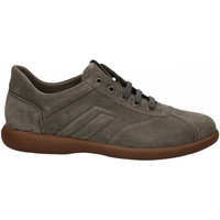 Chaussures Homme Baskets basses Frau SUEDE roccia
