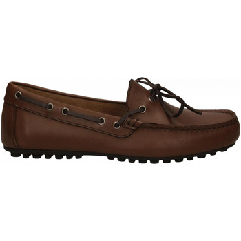 Chaussures Homme Mocassins Frau SPINNER brown