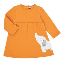 Vêtements Fille Robes courtes Noukie's Z050083 Orange