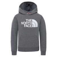 Vêtements Enfant Sweats The North Face DREW PEAK HOODIE Gris