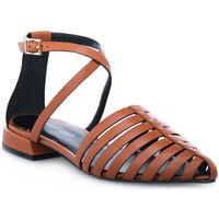 Chaussures Femme Sandales et Nu-pieds Elvio Zanon PARMA CUOIO Marrone