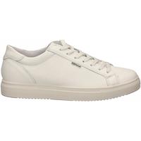 Chaussures Homme Baskets basses IgI&CO USH 51387 bianco