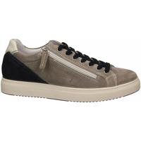 Chaussures Homme Baskets basses IgI&CO USH 51389 grigio
