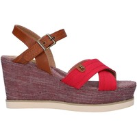 Chaussures Femme Sandales et Nu-pieds Refresh 69908 Rojo