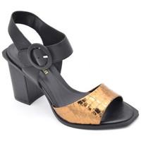 Chaussures Femme Sandales et Nu-pieds Bruno Premi bz1103x Noir