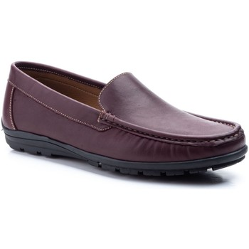 Chaussures Homme Mocassins Iberico Shoes  Autres
