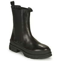 Chaussures Femme Boots Sweet Lemon PAPILA Noir