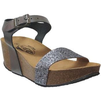 Chaussures Femme Sandales et Nu-pieds Plakton So kiss Gris metal cuir