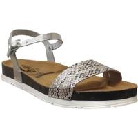 Chaussures Femme Sandales et Nu-pieds Plakton Garden Gris metal cuir
