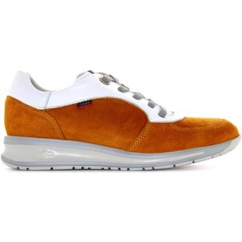 Chaussures Femme Baskets basses CallagHan 87134 Senape