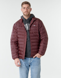 Vêtements Homme Doudounes Levi's PRESIDIO PACKABLE JACKET  Sassafras