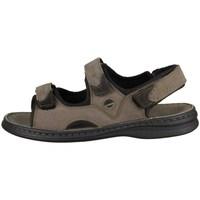 Chaussures Homme Sandales et Nu-pieds Josef Seibel Franklin Marron