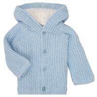 Vêtements Garçon Manteaux Carrément Beau Y96053 Bleu