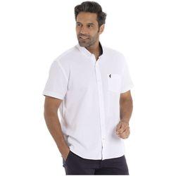 Vêtements Homme Chemises manches courtes Gentleman Farmer CALVI Blanc