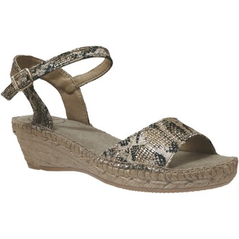 Chaussures Femme Espadrilles Toni Pons AMBER Taupe toile