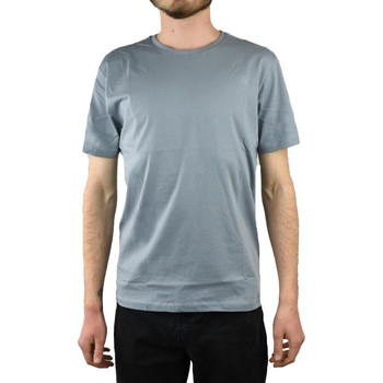 Vêtements Homme T-shirts manches courtes The North Face Simple Dome Tee Grise