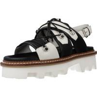Chaussures Femme Sandales et Nu-pieds Elvio Zanon EL0901X Blanc