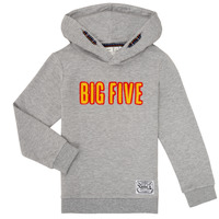 Vêtements Garçon Sweats Name it NKMLBUGVI Gris