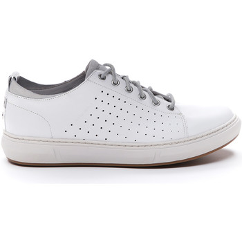 Chaussures Homme Baskets basses Stonefly SNEAKER RAPID 4 MAN NAPPA Bianco