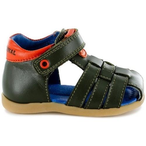 Chaussures Garçon Sandales et Nu-pieds Stones And Bones 4123 SARO vert