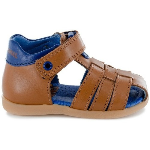 Chaussures Garçon Sandales et Nu-pieds Stones And Bones 4123 SARO bleu