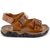Chaussures Garçon Sandales et Nu-pieds Stones And Bones 5379 WHAM Marron