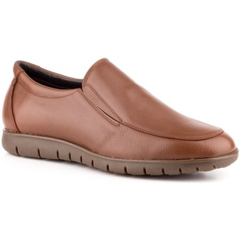 Chaussures Homme Mocassins Carlo Garelli Shoes  Marron