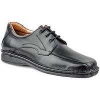 Chaussures Homme Derbies Cactus Calzados  Noir