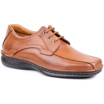 Chaussures Homme Derbies Cactus Calzados  Marron
