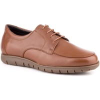 Chaussures Homme Derbies Carlo Garelli Shoes  Marron