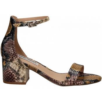 Chaussures Femme Sandales et Nu-pieds Steve Madden IRENEE snake