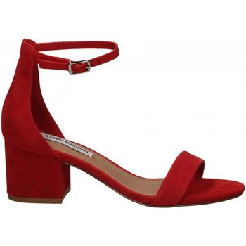 Chaussures Femme Sandales et Nu-pieds Steve Madden IRENEE SUEDE red