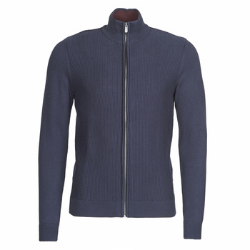 Vêtements Homme Gilets / Cardigans Tom Tailor 1020418-10690 Marine