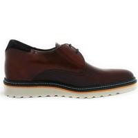 Chaussures Homme Derbies Zerimar EL CAIRO Marron