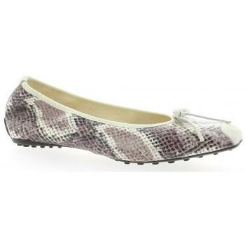 Chaussures Femme Ballerines / babies Elizabeth Stuart Ballerines cuir python  naturel Naturel