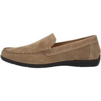 Chaussures Homme Mocassins Imac 500711 beige
